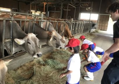 ミルク牧場校外学習 - Aso Milk Farm field trip